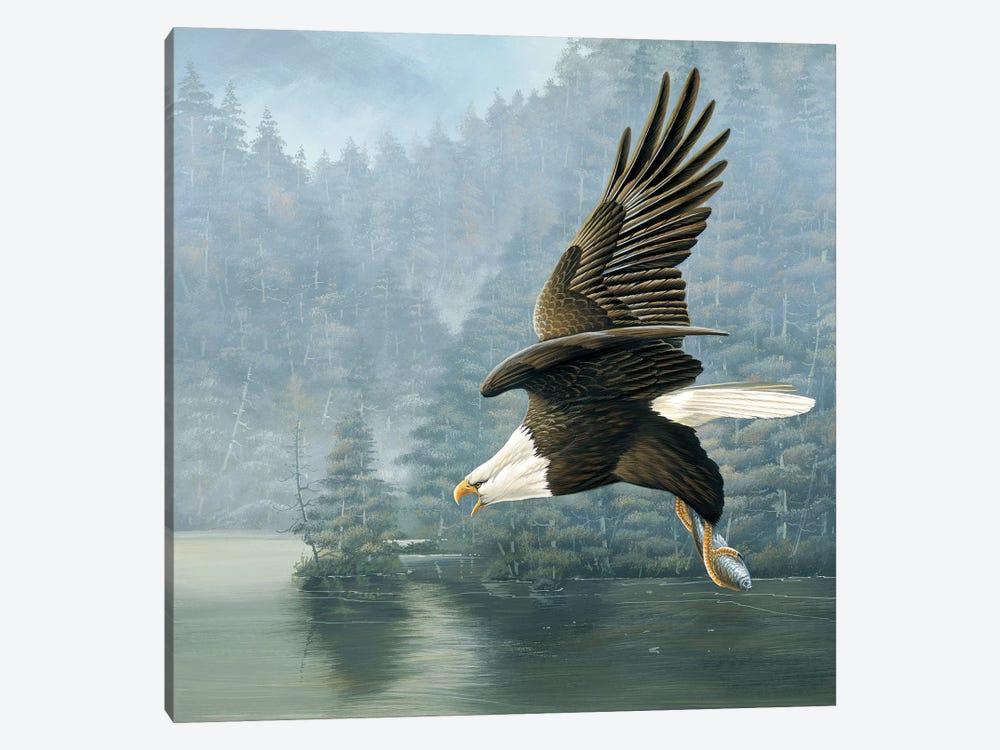 Flying Eagle by Jan Weenink 1-piece Canvas Art Print