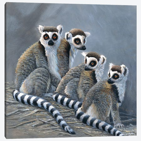 Four Monkeys Canvas Print #WEE19} by Jan Weenink Canvas Print