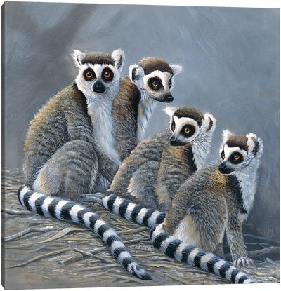 Four Monkeys Canvas Art Print