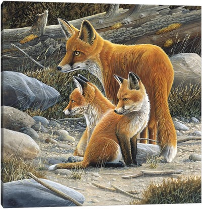Fox Family Canvas Art Print