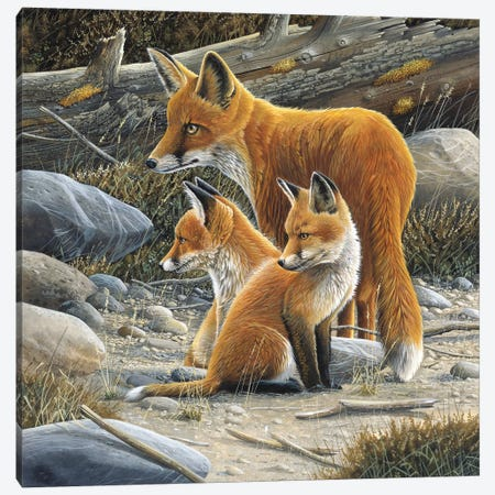 Fox Family Canvas Print #WEE20} by Jan Weenink Canvas Wall Art
