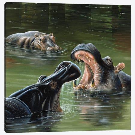 Hippos In Water Canvas Print #WEE23} by Jan Weenink Canvas Art