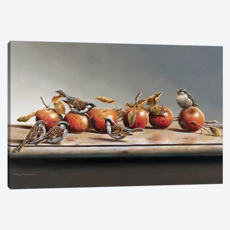 House Sparrows I Canvas Print #WEE24} by Jan Weenink Canvas Print