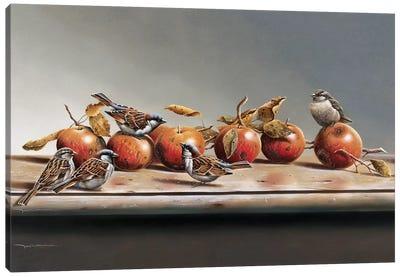House Sparrows I Canvas Art Print
