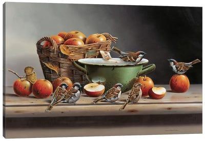 House Sparrows II Canvas Art Print