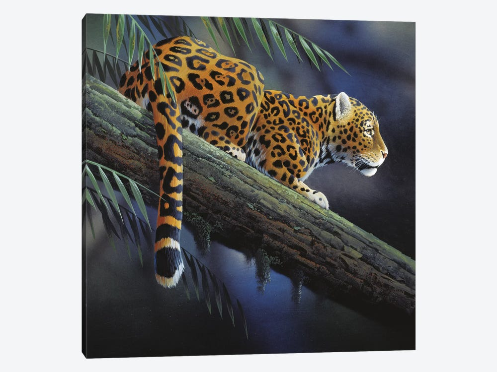 Jaguar In A Tree by Jan Weenink 1-piece Canvas Wall Art