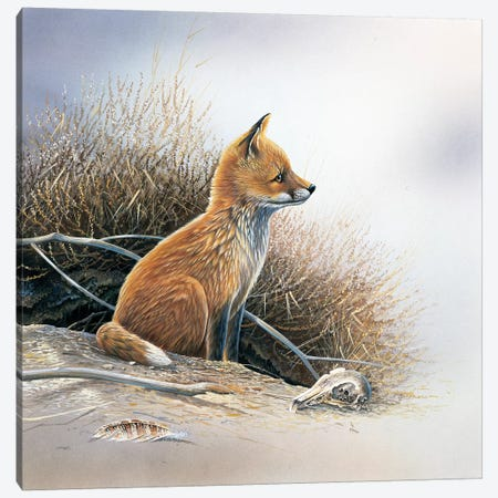 Little Fox Canvas Print #WEE29} by Jan Weenink Canvas Wall Art