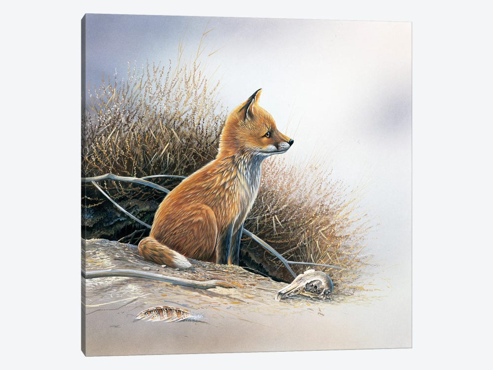 Little Fox by Jan Weenink 1-piece Canvas Print