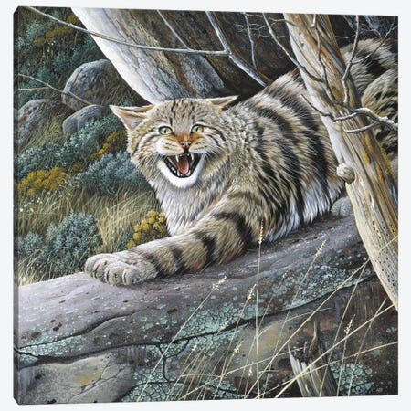 Lynx 3-Piece Canvas #WEE30} by Jan Weenink Canvas Print