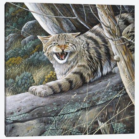 Lynx Canvas Print #WEE30} by Jan Weenink Canvas Print