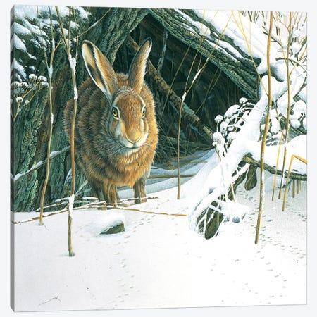 Rabbit Canvas Print #WEE34} by Jan Weenink Canvas Art