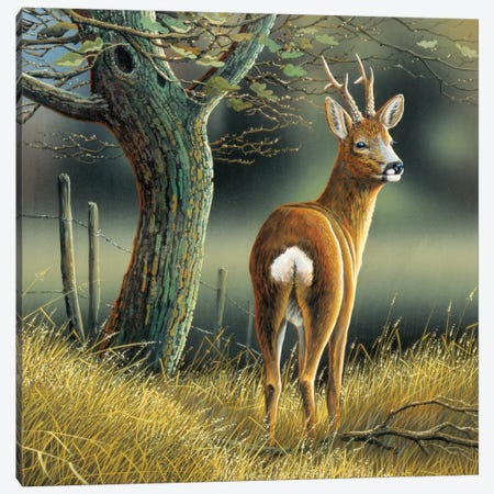 Reindeer Canvas Print #WEE35} by Jan Weenink Canvas Wall Art
