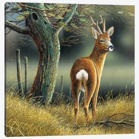 Reindeer Canvas Print #WEE35} by Jan Weenink Canvas Wall Art