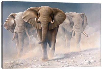 Running Elephants I Canvas Art Print