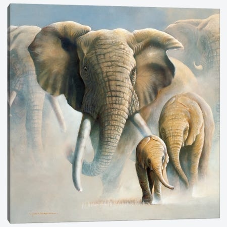 Running Elephants II Canvas Print #WEE37} by Jan Weenink Canvas Wall Art