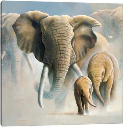 Running Elephants II Canvas Art Print