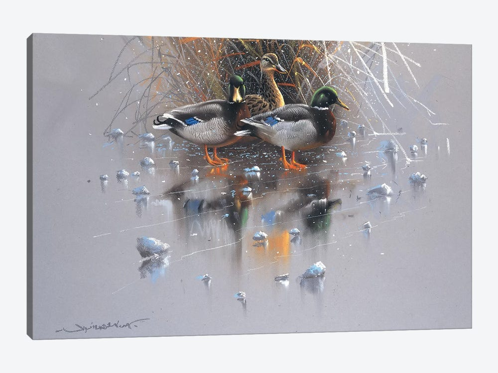 Three Ducks by Jan Weenink 1-piece Art Print