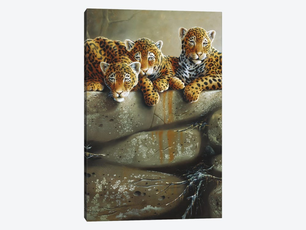 Three Little Tigers by Jan Weenink 1-piece Canvas Art