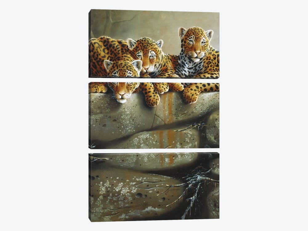 Three Little Tigers by Jan Weenink 3-piece Canvas Wall Art