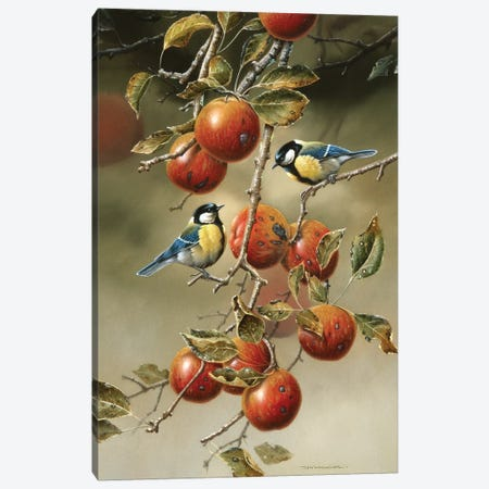 Two Birds In An Apple Tree Canvas Print #WEE42} by Jan Weenink Canvas Artwork