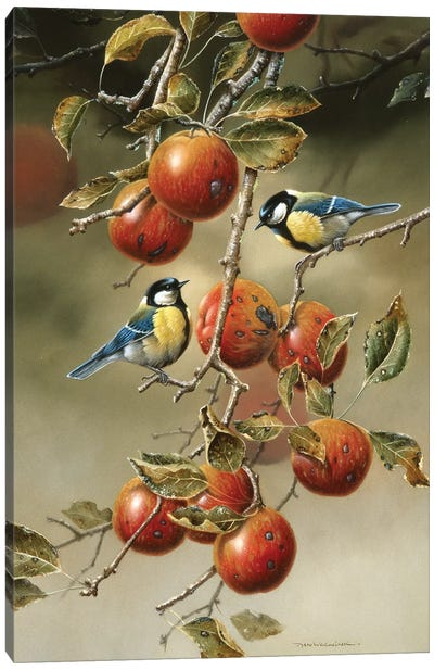 Two Birds In An Apple Tree Canvas Art Print