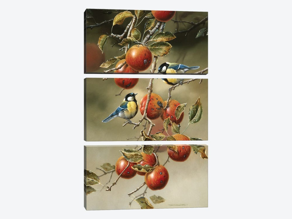 Two Birds In An Apple Tree 3-piece Canvas Artwork