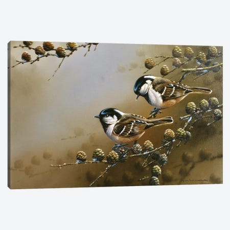 Two Birds On A Branch Canvas Print #WEE43} by Jan Weenink Canvas Artwork