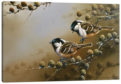 Two Birds On A Branch Canvas Art Print