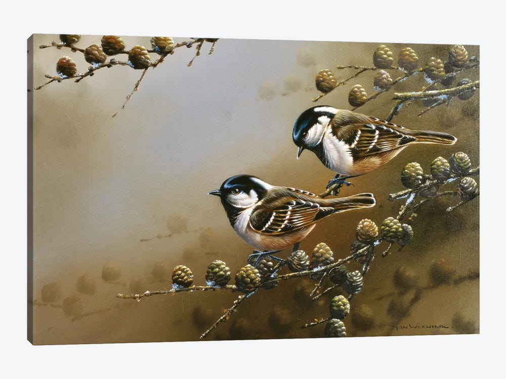 Two Birds On A Branch by Jan Weenink 1-piece Canvas Print
