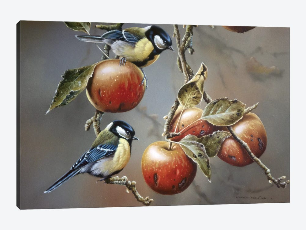 Two Birds With Apples by Jan Weenink 1-piece Canvas Wall Art