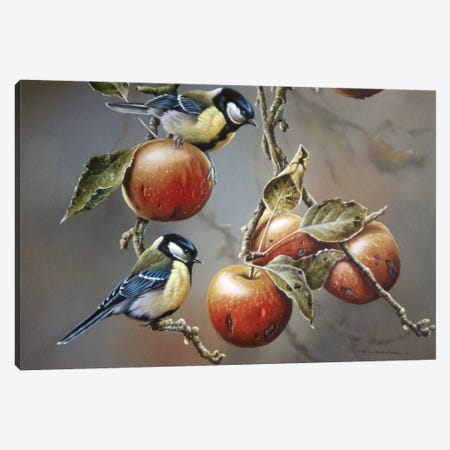 Two Birds With Apples Canvas Print #WEE44} by Jan Weenink Art Print