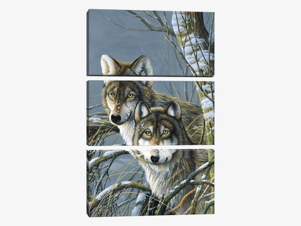 Two Wolves by Jan Weenink 3-piece Canvas Artwork