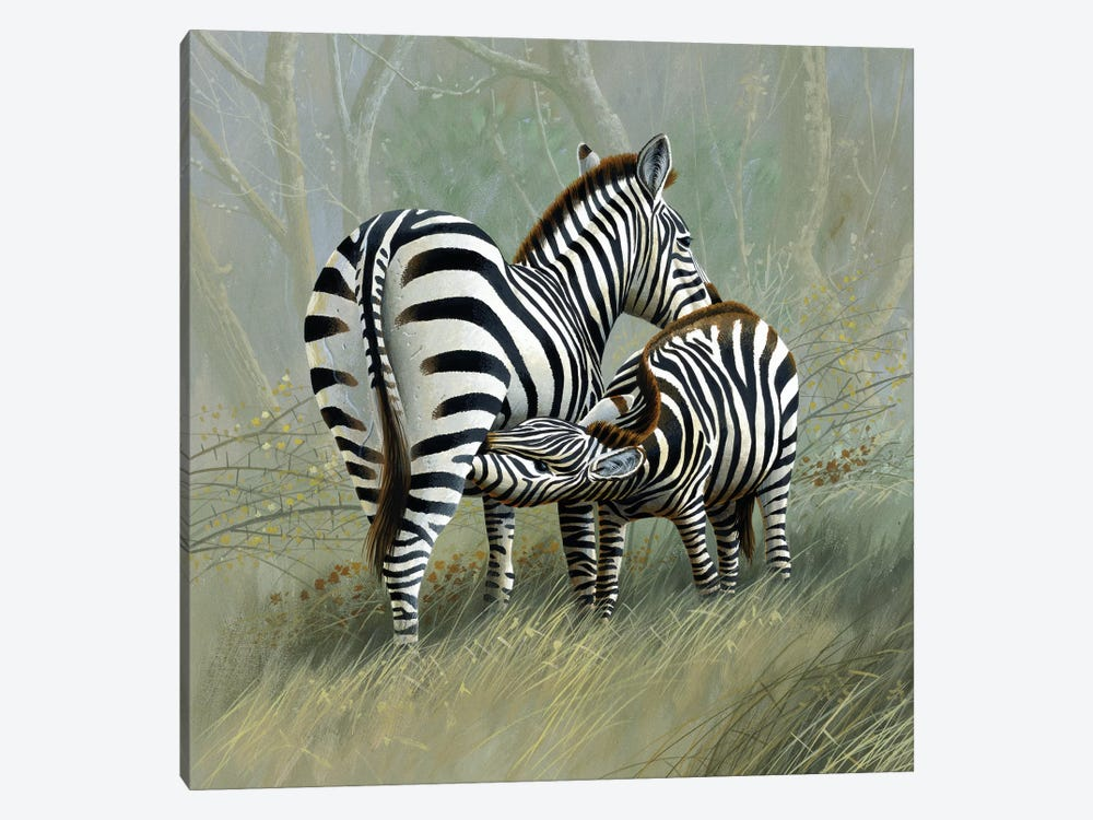 Two Zebras by Jan Weenink 1-piece Canvas Art Print