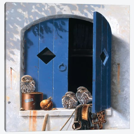 Visiting Birds I Canvas Print #WEE48} by Jan Weenink Canvas Wall Art