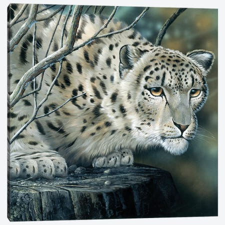 White Leopard Canvas Print #WEE50} by Jan Weenink Canvas Art Print