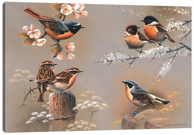 Bird Composition Canvas Art Print