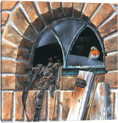 Bird In A Window Canvas Art Print