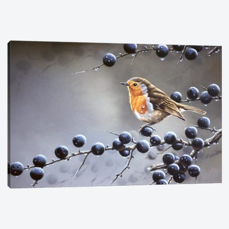 Bird Sitting On A Vine Tree Canvas Print #WEE9} by Jan Weenink Art Print