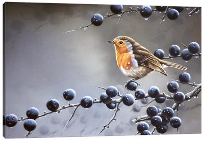 Bird Sitting On A Vine Tree Canvas Art Print