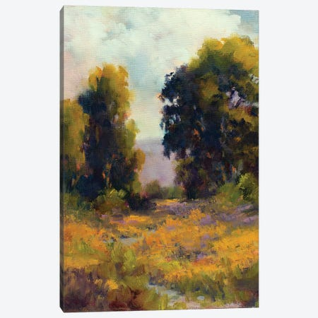 Eucalyptus Path Canvas Print #WEI1} by Alice Weil Canvas Print