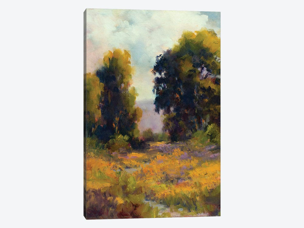 Eucalyptus Path by Alice Weil 1-piece Canvas Print