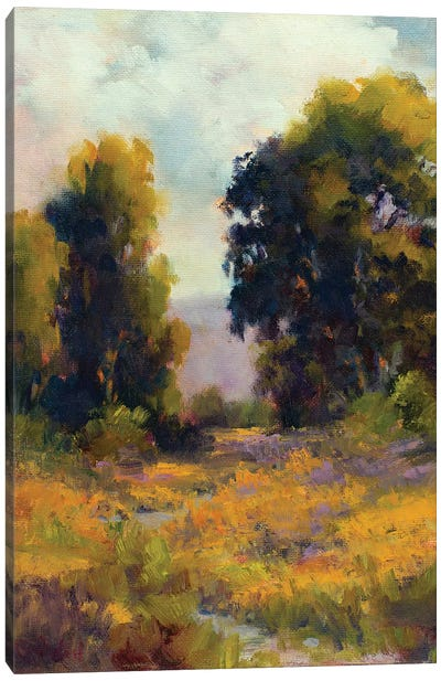 Eucalyptus Path Canvas Art Print