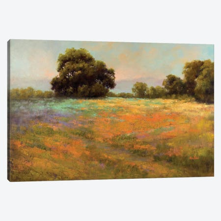 Spring Meadow Canvas Print #WEI3} by Alice Weil Canvas Art Print