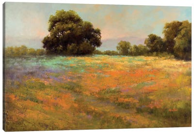 Spring Meadow Canvas Art Print