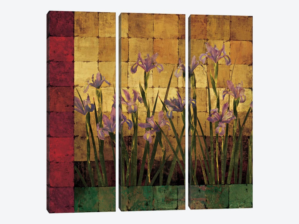 Iris Garden by Marcia Wells 3-piece Canvas Artwork