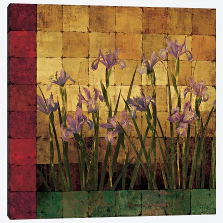 Iris Garden Canvas Print #WEL1} by Marcia Wells Canvas Art