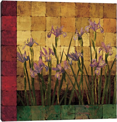 Iris Garden Canvas Art Print