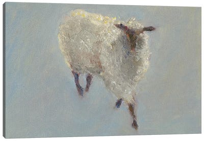 Sheep Strut II Canvas Art Print