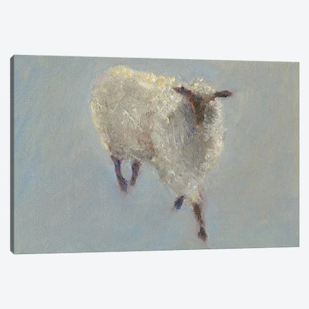 Sheep Strut II Canvas Print #WEN13} by Marilyn Wendling Canvas Art