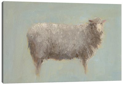 Sheep Strut III Canvas Art Print
